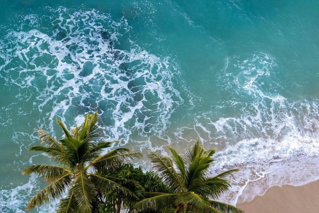Waikiki với những bãi biển đẹp như tranh vẽ.